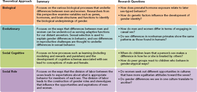 Female sexual orientation quizlet