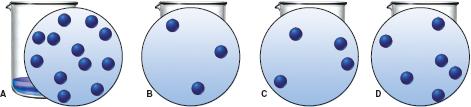 1. Calcium Nitrate And Ammonium Fluoride React To ... | Chegg.com